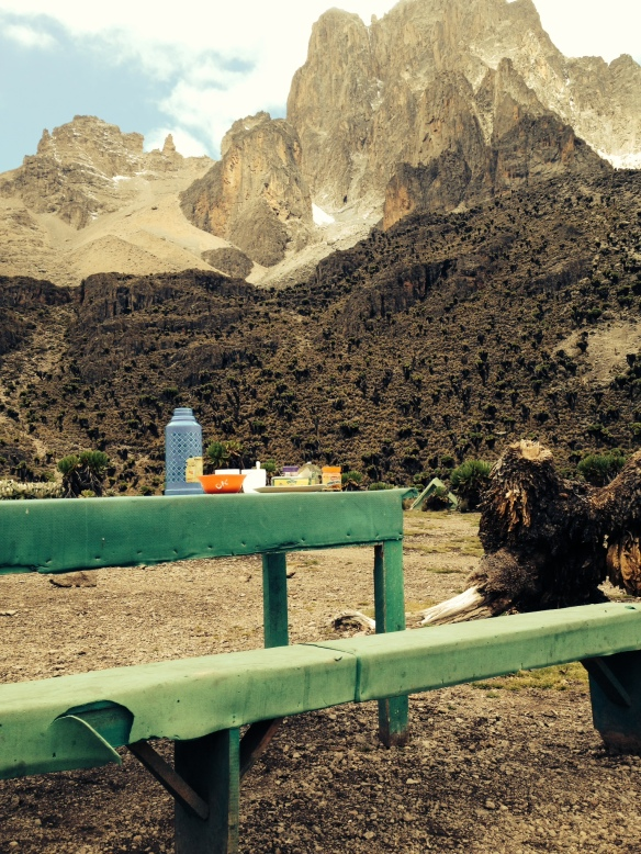 Picnic on top of the world. Mt. Kenya in the background